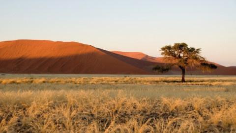 t480_themen-NL_TNL_desert-africa_teaser_kw38-19