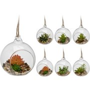 Dekopflanze Kristina - Klar/Braun, LIFESTYLE, Glas/Kunststoff (8/9cm)