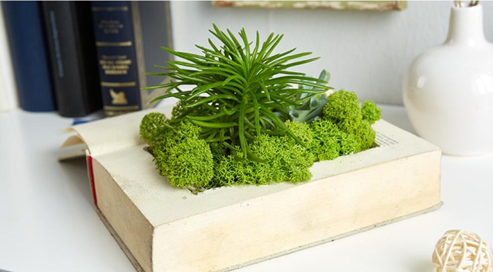 cz-blog-kniha-jako-zahrada-diy-img1