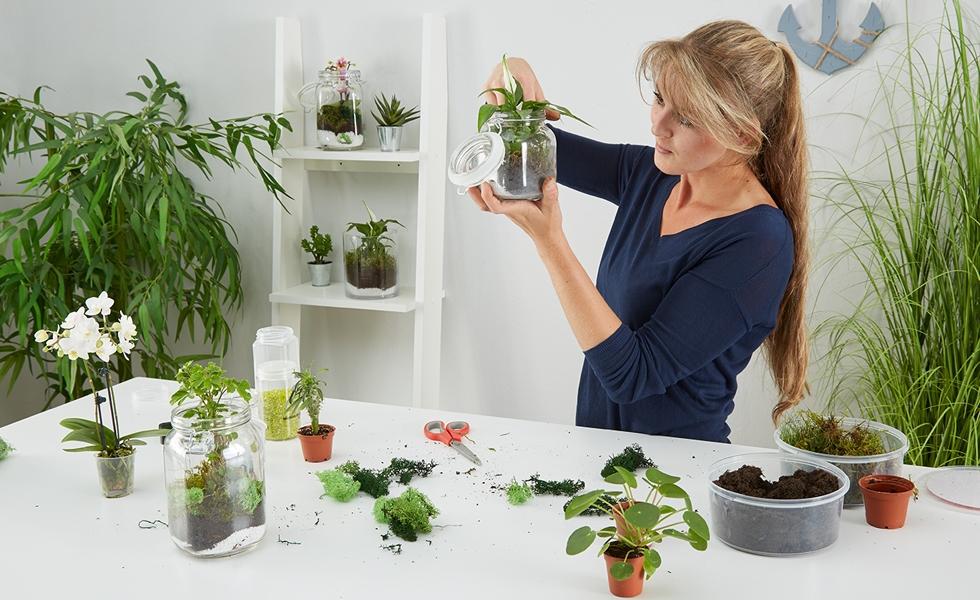 rastlinne-terarium_CZ-zaver-img