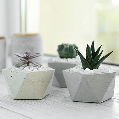 minimalisticka-zahrada_cont_CZ-teaser6-img