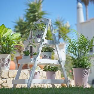 zahrada-violet-stojan_CZ