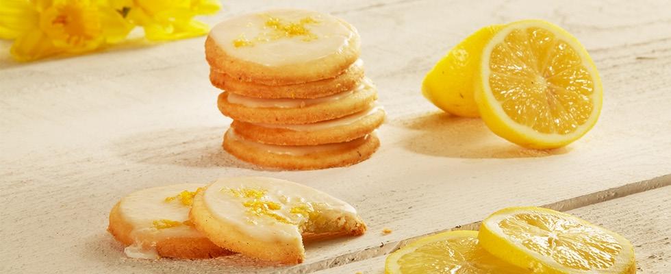 sk-blog-citronove-susienky-img