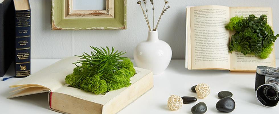 cz-blog-kniha-jako-zahrada-diy-img