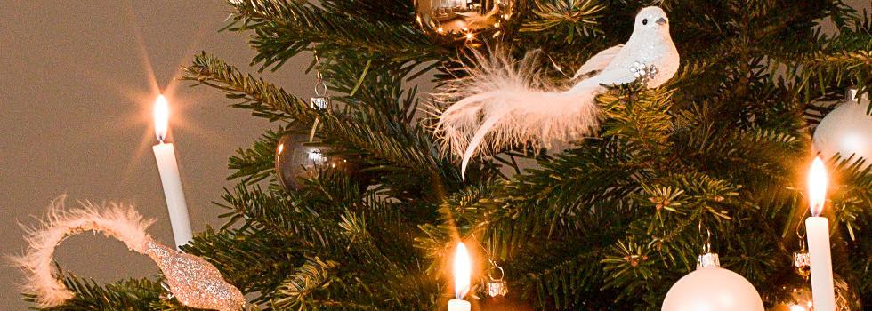 tricks-weihnachtsbaum-schmuecken-2.jpg