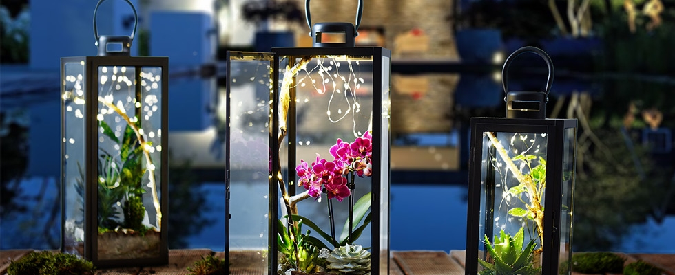 cz-blog-lucerny-s-rastlinami-diy-img