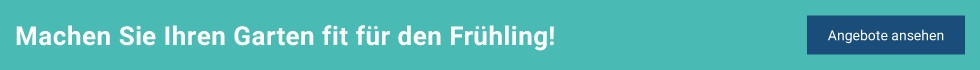 tfd_frontpage_garten-2019_fruehling