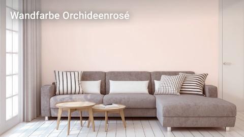 t480_lp_markenwelt_dulora_wandfarbe-orchidee