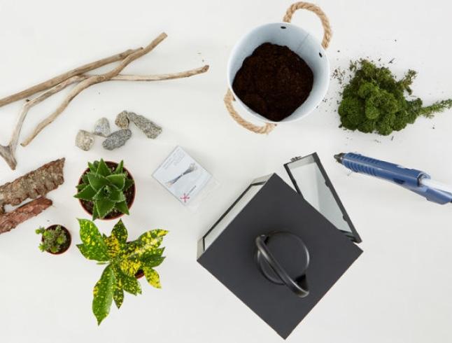cz-blog-lucerny-s-rastlinami-diy-img-teaser1