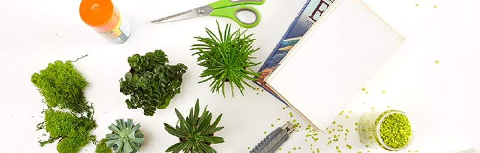 sk-blog-kniha-ako-zahrada-DIY-img1