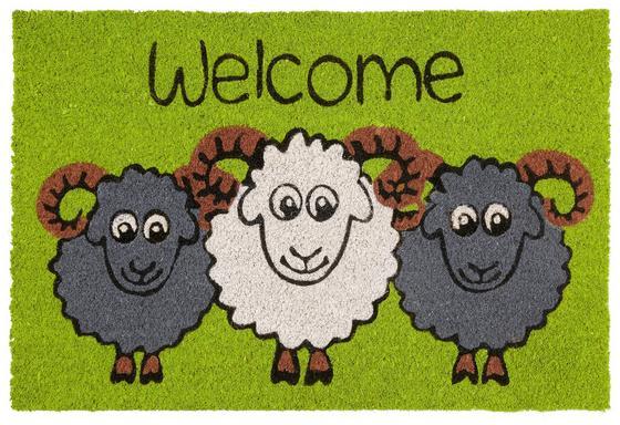 Rohožka Welcome Sheep - Multicolor (40/60cm) - Mömax modern living