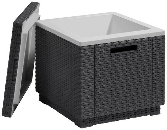 Kühlbox Cube - Graphitfarben, MODERN, Kunststoff (42/41/42cm) - Allibert