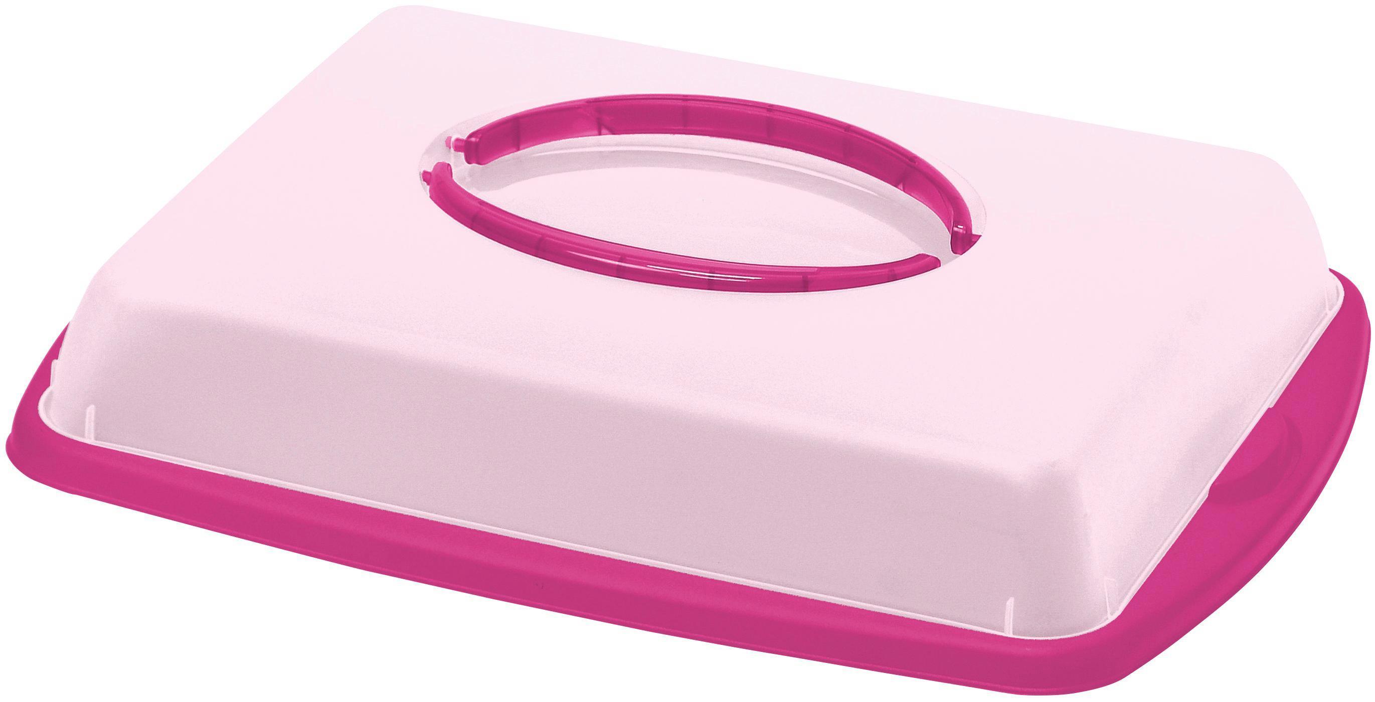 Süteményes Doboz Jordan - lila/rózsaszín, konvencionális, műanyag (43/31/9cm) - OMBRA