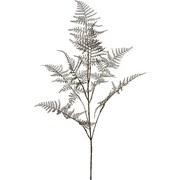 Dekozweig Asparagus - Silberfarben, MODERN, Kunststoff (88cm)