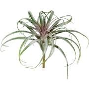 Kunstpflanze Tillandsie Geeist - Weiß/Grün, LIFESTYLE, Kunststoff (26cm)