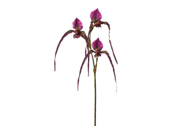 Orchidej 3019255mm-00 - zelená/fialová, Basics, umělá hmota (104cm)