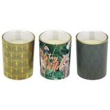 Kerze im Glas Jade - Goldfarben/Grün, LIFESTYLE, Glas (5/6cm)