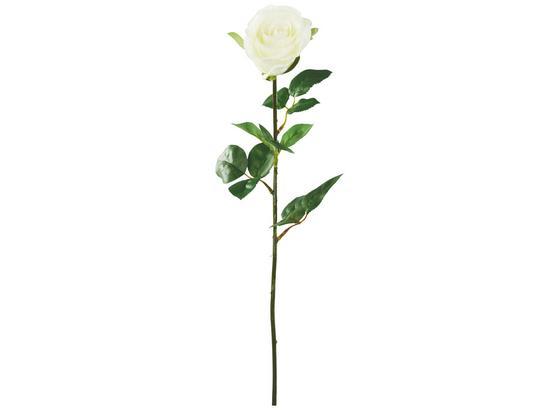 Rostlina Umělá Alfred - krémová/zelená, kov/umělá hmota (69cm) - Mömax modern living