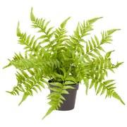 Kunstpflanze Bastiano - Schwarz/Grün, KONVENTIONELL, Kunststoff (25/29cm) - Ombra