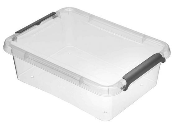 Box mit Deckel Lara - Transparent, Basics, Kunststoff (19,5/15/6cm) - Homezone