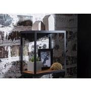 Wandregal Piru B: ca. 35 cm - Sheeshamfarben, MODERN, Holz/Metall (35/35/18cm) - Carryhome