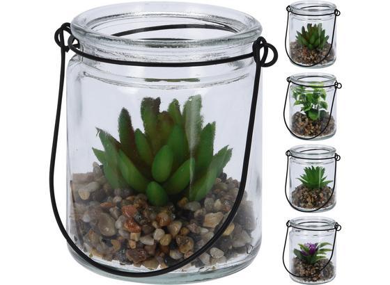 Dekopflanze Kiki - Klar/Greige, LIFESTYLE, Glas/Kunststoff (10/10cm)