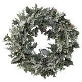 Kranz Ø 48 cm - Weiß/Grün, MODERN, Kunststoff (48cm)