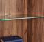 Vitrína Avensis New - farby dubu/biela, Konvenčný, kompozitné drevo/sklo (60/205,7/37,1cm) - Luca Bessoni