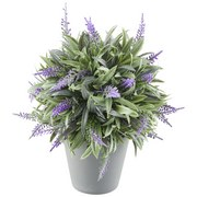 Lavendel Bathia - Lila/Grau, KONVENTIONELL, Kunststoff (18/23cm) - Ombra
