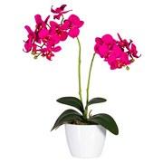 Orchidee Sofie - Lila/Multicolor, Natur, Kunststoff (40cm)