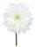 Gerbera Rosi Weiss - Weiß/Grün, Natur, Kunststoff (60cm)