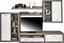 Obývacia Stena Cancan 1 - farby strieborného duba, Moderný, kompozitné drevo (290/189/48cm)
