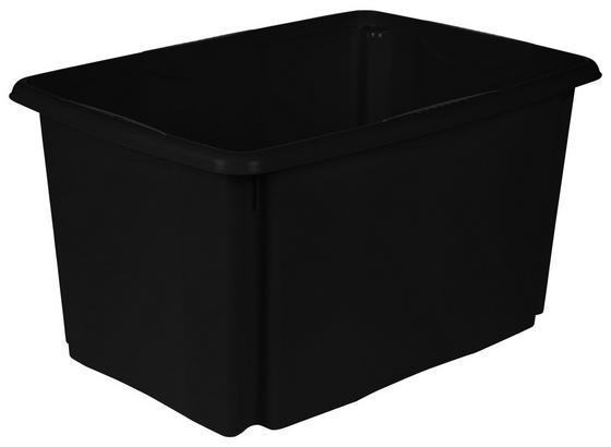 Aufbewahrungsbox Emil 45 Liter - Schwarz, Basics, Kunststoff (54,5/29,5/39cm)