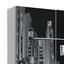 Schwebetürenschrank Plakato City B:170cm Weiß Dekor - Schwarz/Weiß, MODERN, Holzwerkstoff/Kunststoff (170,3/190,5/61,2cm)