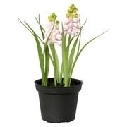 Kunstpflanze Muscari - Schwarz/Rosa, Basics, Kunststoff (17cm)