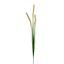 Umelá Rastlina Penisetumgras - zelená, Basics, plast (92cm)