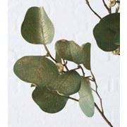 Dekozweig Eykalyptus Bine L: 85cm - Basics, Textil (85cm)