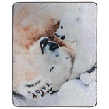 Kuscheldecke Eisbär - Multicolor, LIFESTYLE, Textil (130/160cm)