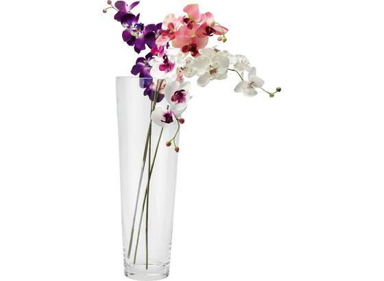 Váza Conical - čiré, Moderní, sklo (17/50cm) - Mömax modern living