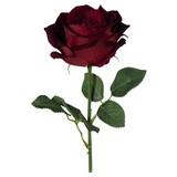 Rose Eden - Bordeaux/Grün, MODERN, Kunststoff (68cm)