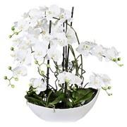 Kunstpflanze Orchidee H: 68 cm Weiß - Weiß/Grün, Trend, Keramik/Kunststoff (68cm) - MID.YOU