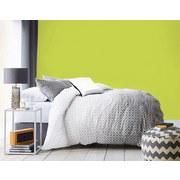 Wandfarbe 2,5 Liter Apfelgrün - Grün (2,5l) - Dulora