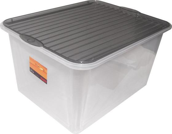 Box mit Deckel Björn ca. 40 L - Klar, KONVENTIONELL, Kunststoff (48/36/25,5cm) - Plast 1