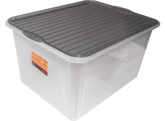 Tárolódoboz Műanyag - Átlátszó, konvencionális, Műanyag (48/36/25,5cm)