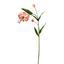 Umelá Kvetina Lilie - zelená/ružová, Basics, plast (72cm)