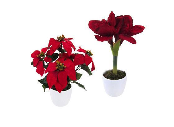 Umelá Rastlina 111004ce-00  Weihnachtstern - Basics (40cm)