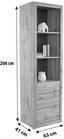 REGAL Tizio - Eichefarben/Silberfarben, MODERN, Holzwerkstoff (63/206/41cm)
