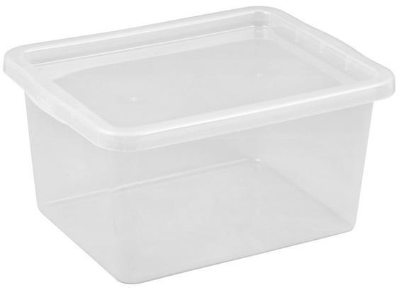 Box S Víkem Harris - průhledné, umělá hmota (59,5/39,5/31,0cm)