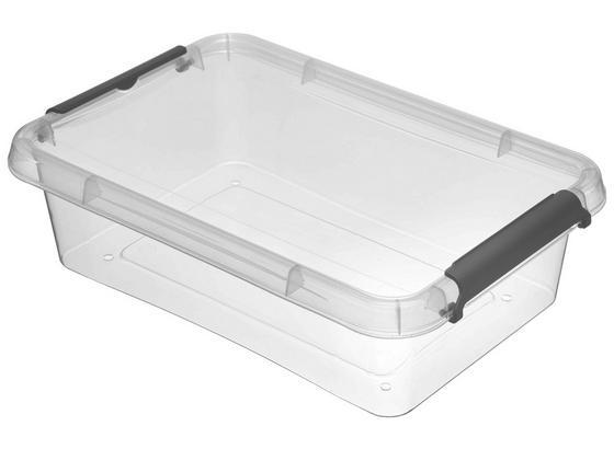 Box mit Deckel Lara - Transparent, Basics, Kunststoff (29/20/8cm)