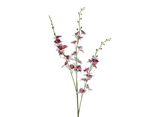 Orchidea 3018125mm-42 - lila/biela, Basics, plast (100cm)